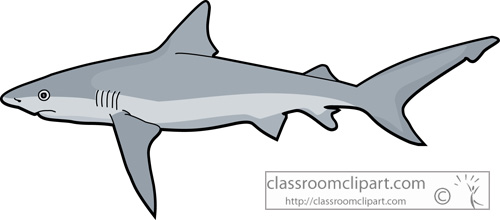 Great White Shark Clip Art