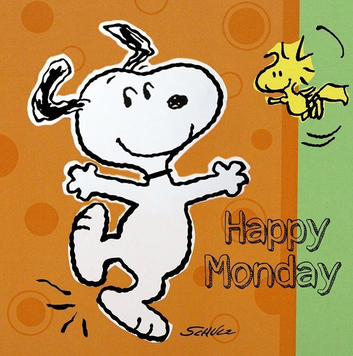 Image result for snoopy monday pics