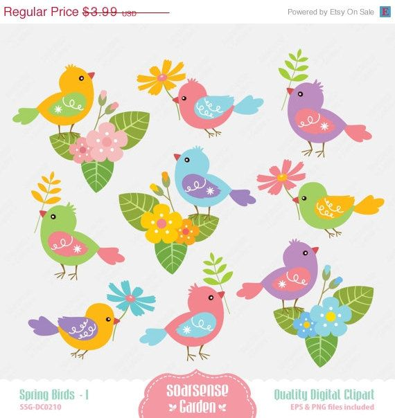 30  Off Sale Spring Birds Digital Clipart