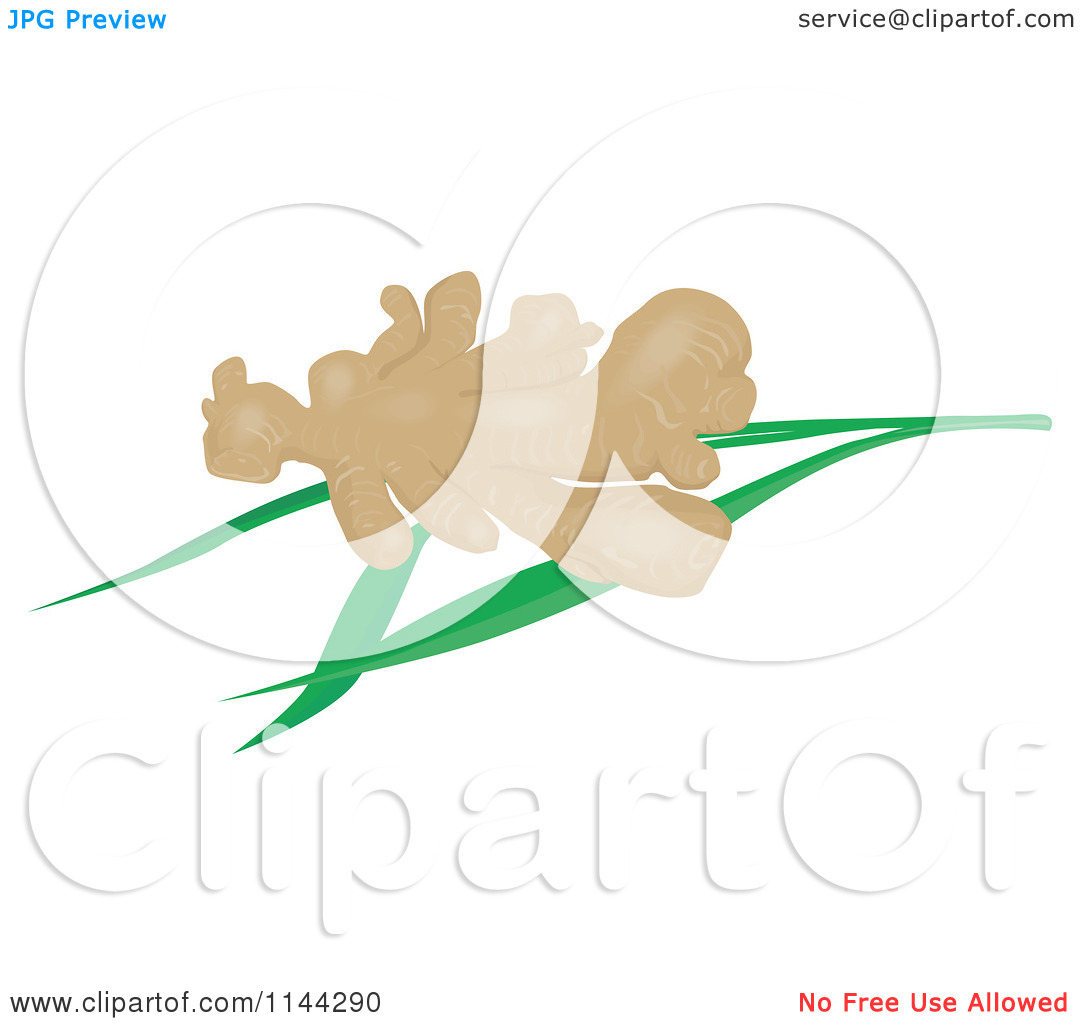Clipart Of Ginger Root Over Leaves   Royalty Free Vector Illustration