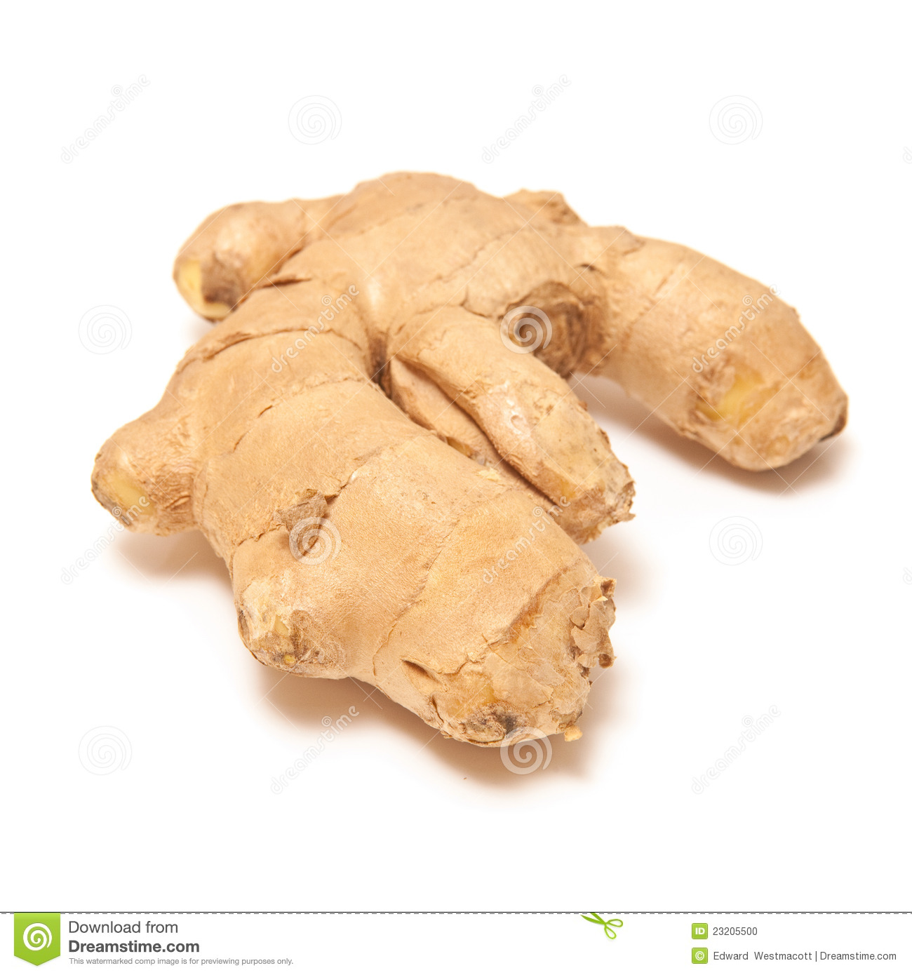 Ginger Root On White Background  Ginger Is A Rhizome And Is Consumed