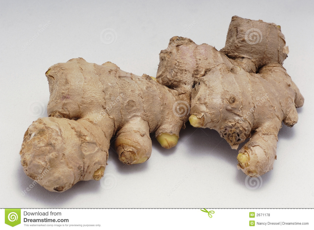 Ginger Root Royalty Free Stock Photos   Image  2671178