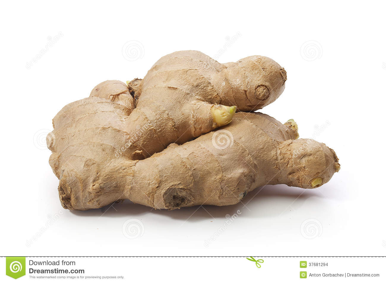 Ginger Root Stock Images   Image  37681294
