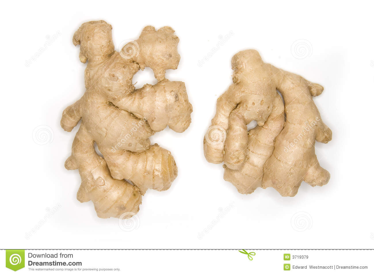 Pair Of Ginger Roots Isolated On White
