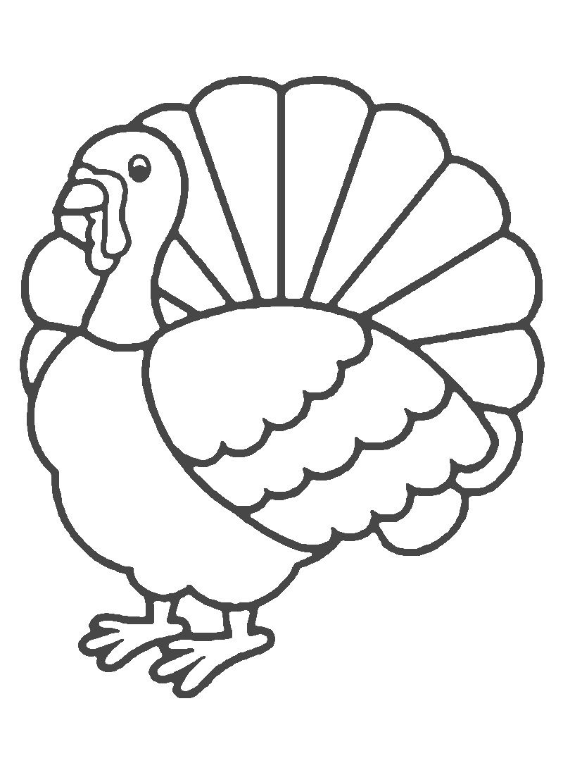 turkey wattle coloring pages - photo#13