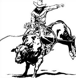 Tags Rodeo Roping Bull Riding Did You Know Rodeo Evolved From Cattle