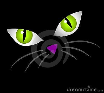 Art Cartoon Illustration Of The Facial Features Of A Cat   Big Eyes