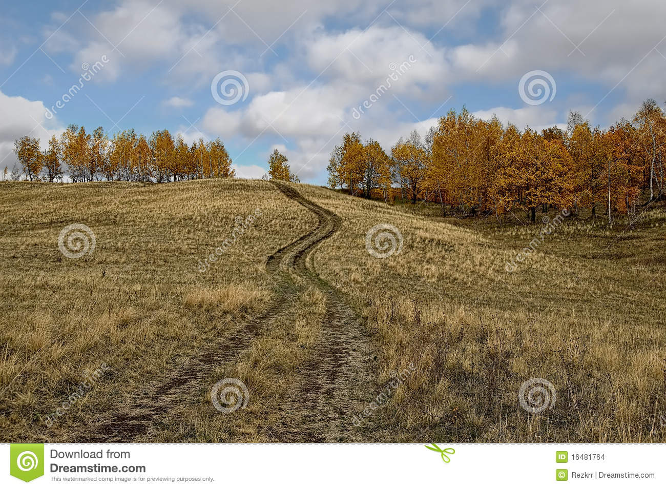 Dirt Road The Trail Vehicle In A Yellow Brown Hills The Trees With
