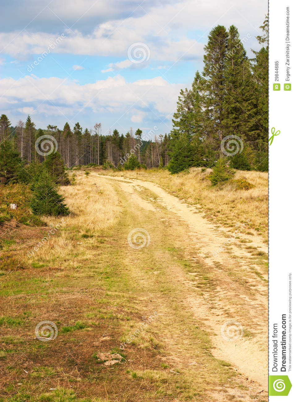 Road In The Mountains Royalty Free Stock Photo   Image  29844685