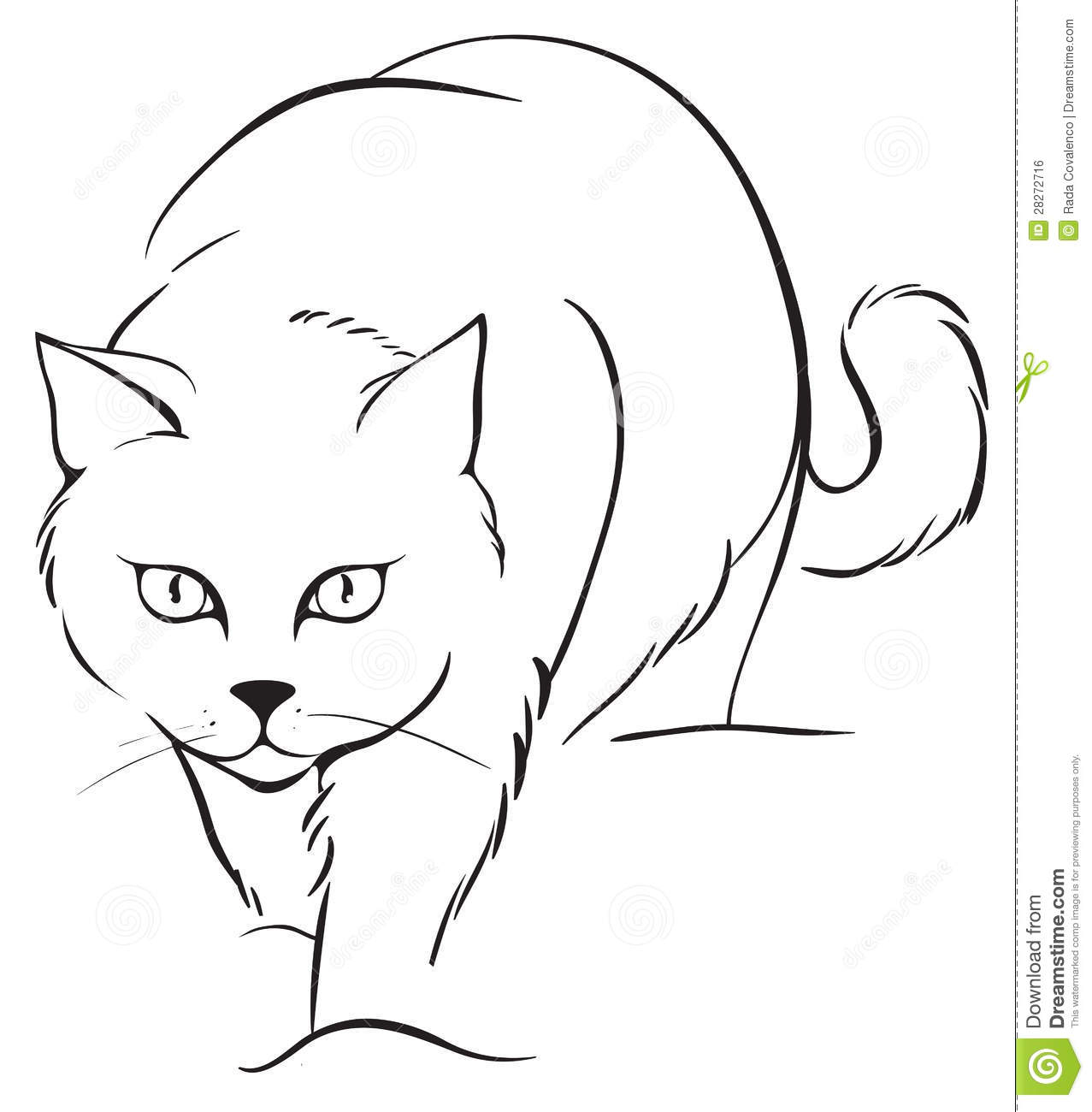 how to draw a cartoon cat step image vector clip art online royalty