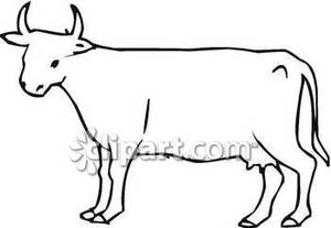 Outline Cow