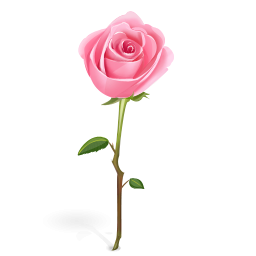Pink Rose With Stem Icon Png Clipart Image   Iconbug Com