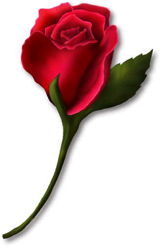 Clip Art Red Rose Clip Art single red rose clipart kid roses clip art png