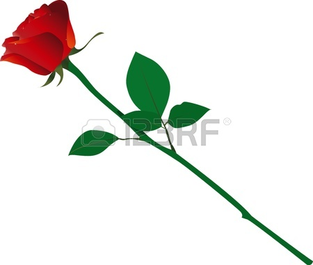 Single Rose Clipart   16329423   Clipart Panda   Free Clipart Images