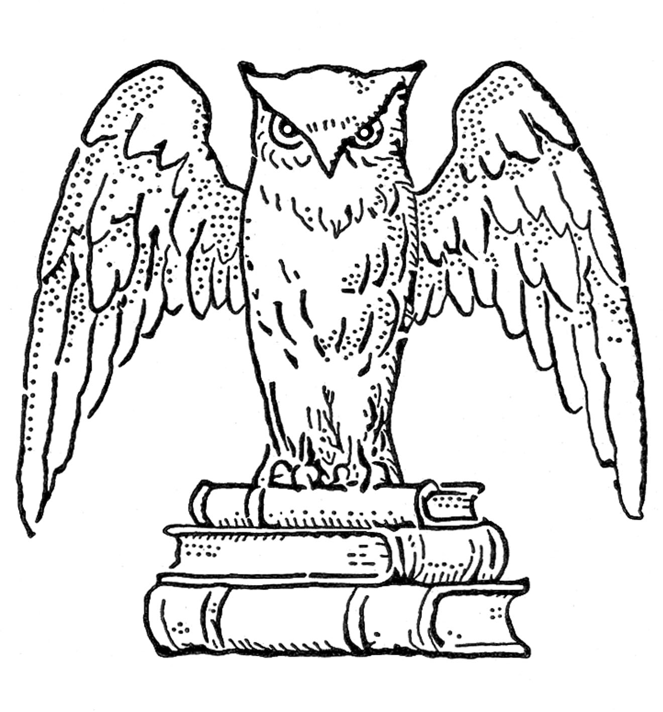 Vintage Clip Art   Interesting Owl With Books   The Graphics Fairy
