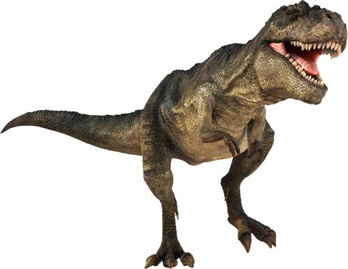 Realistic Dinosaur T Rex Clipart Dinosaurs Page