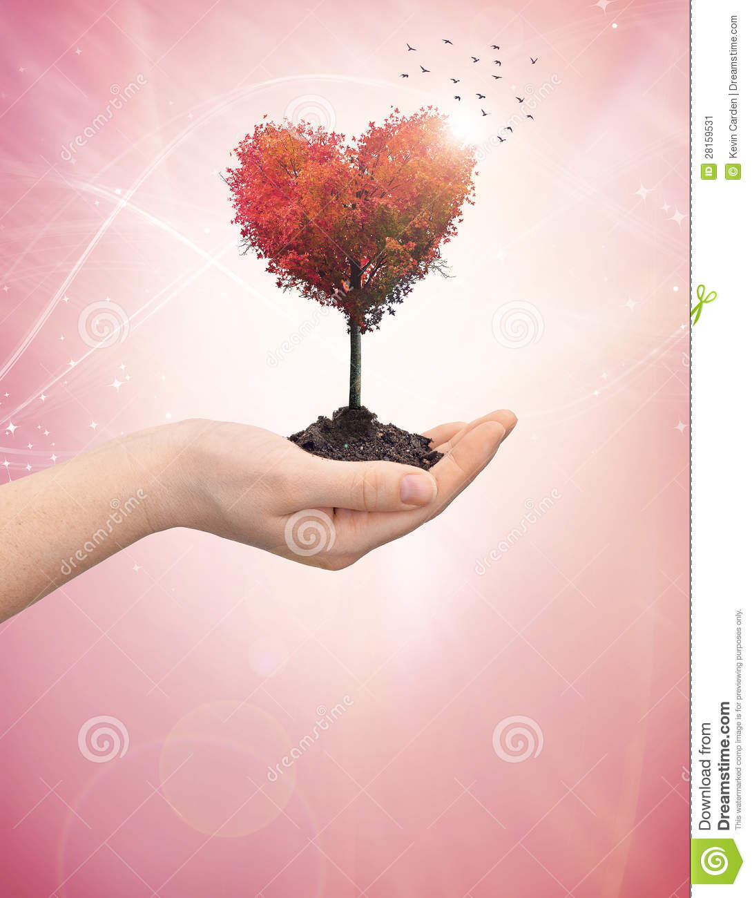 More Similar Stock Images Of   Woman S Hand Holding A Tree Heart