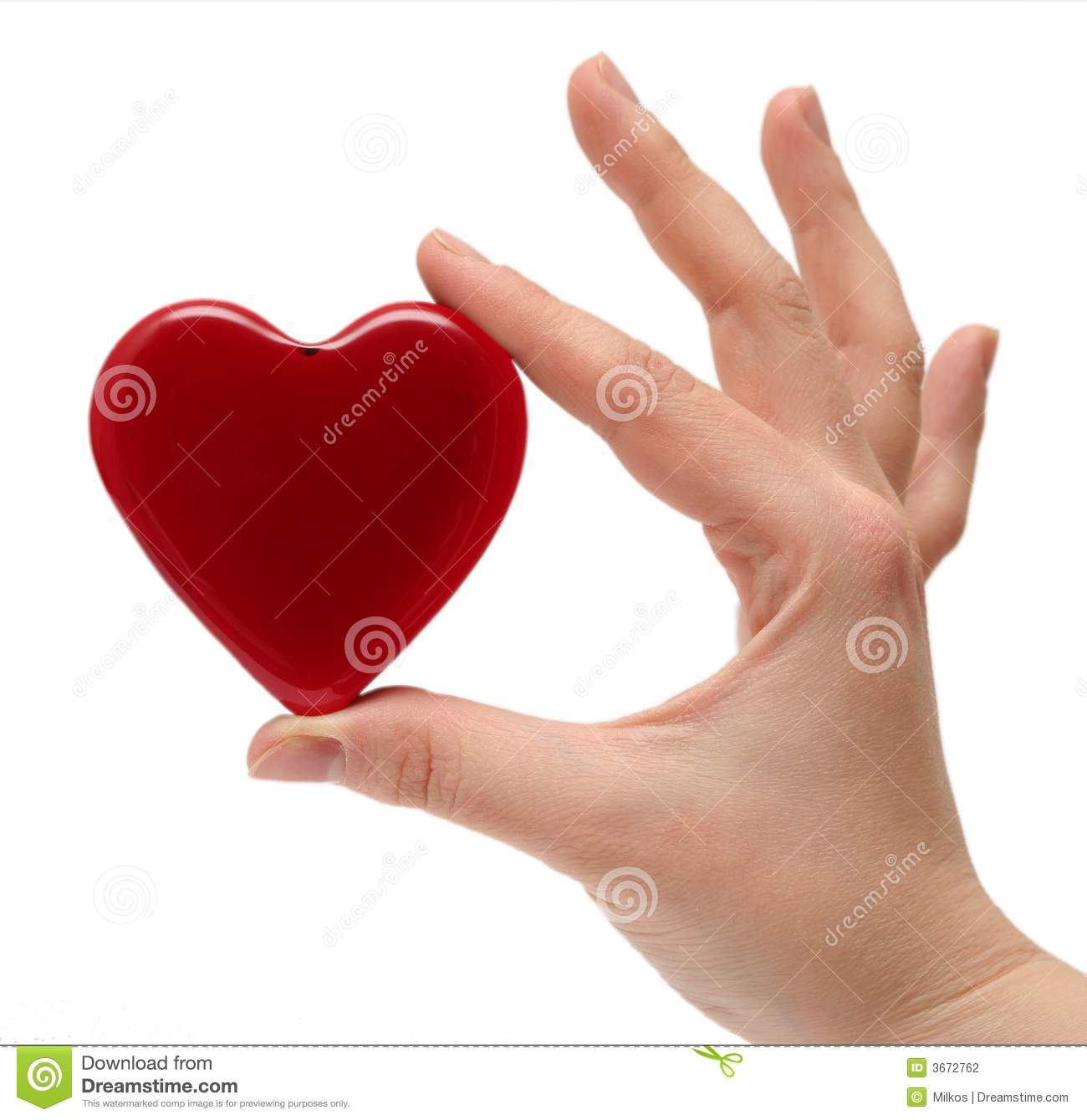 Woman S Hand Holding The Heart Stock Photography   Image  3672762