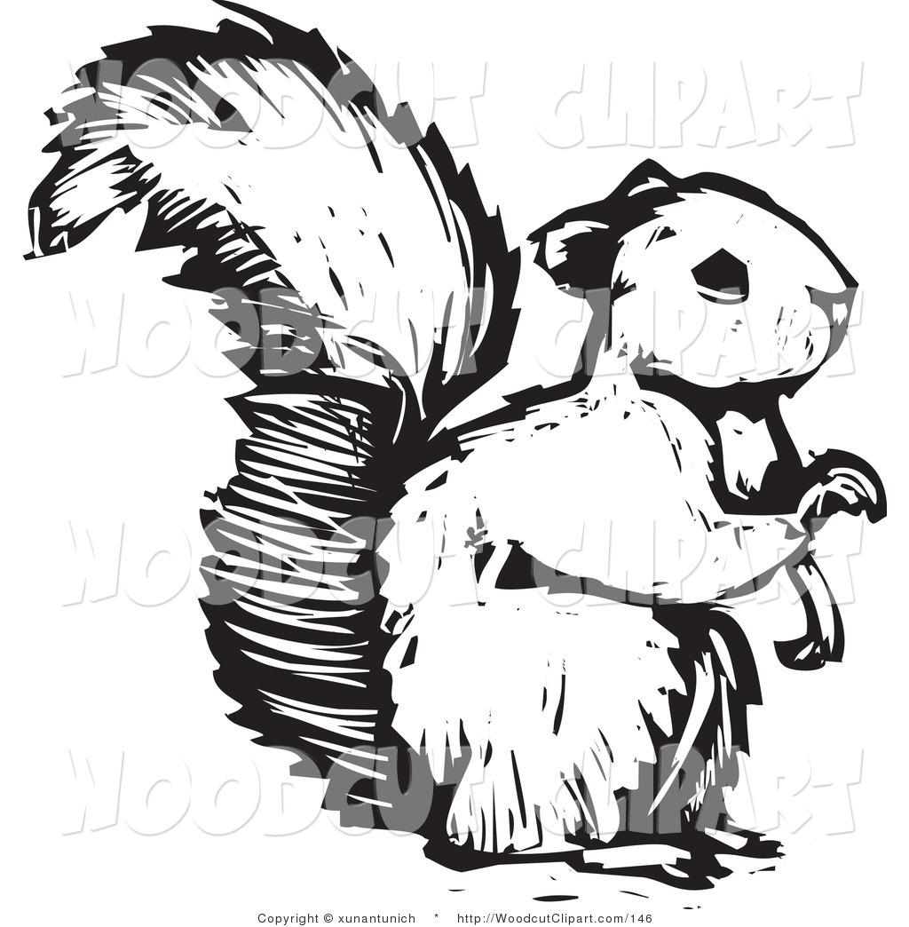 Squirrel Clip Art Vector Clip Art Of A Black And White Squirrel