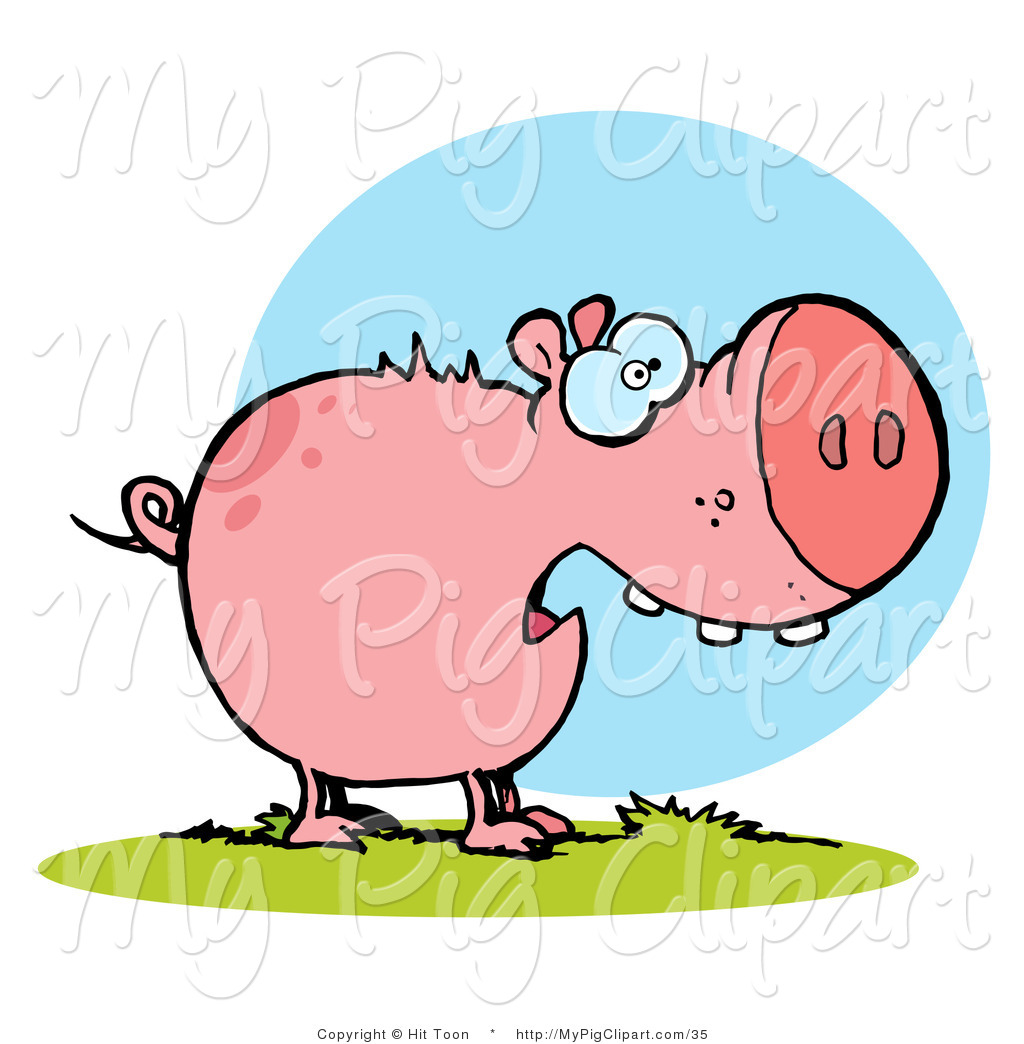 Swine Clipart Coloring Page