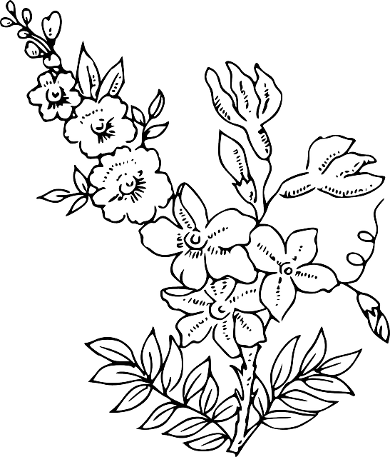 Clip Art Black White Orange Blossom Clipart - Clipart Suggest