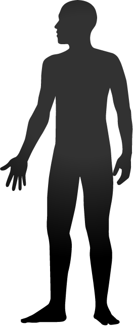 Human Body Silhouette Clipart - Clipart Kid