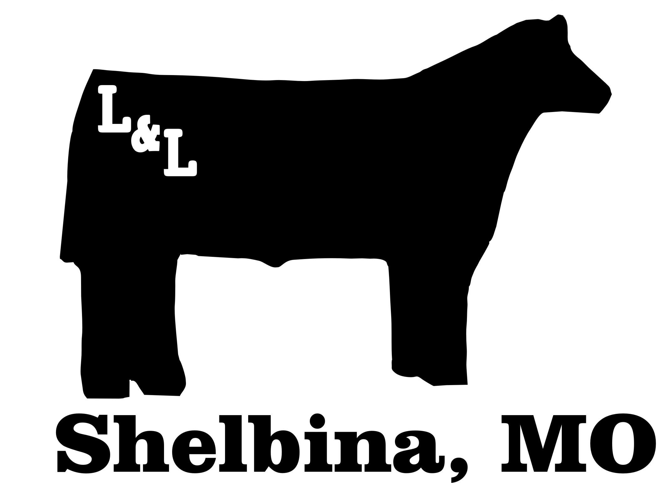 red angus steers clipart clipart suggest