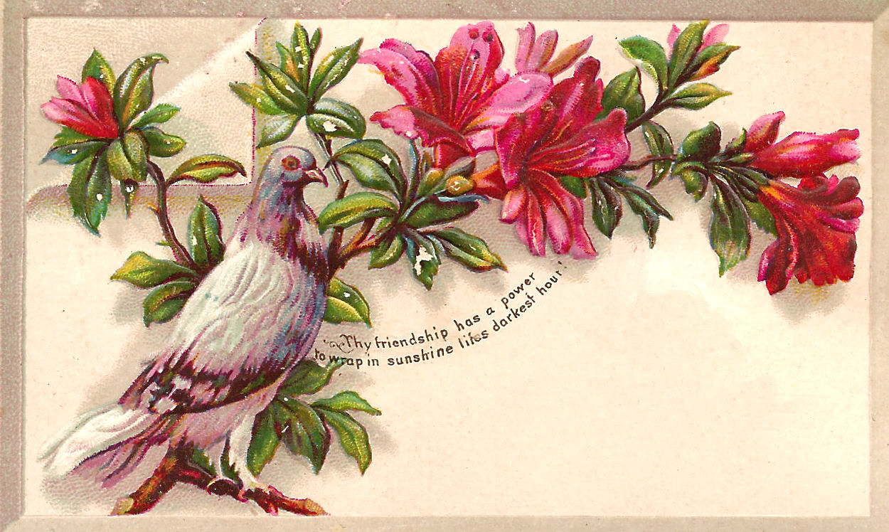 clipart flowers and birds - photo #45