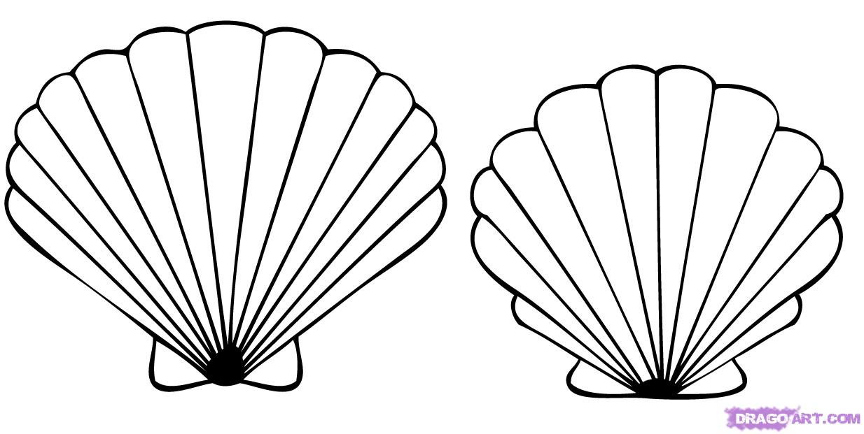 Seashell Outline seashell outline clipart - clipart kid