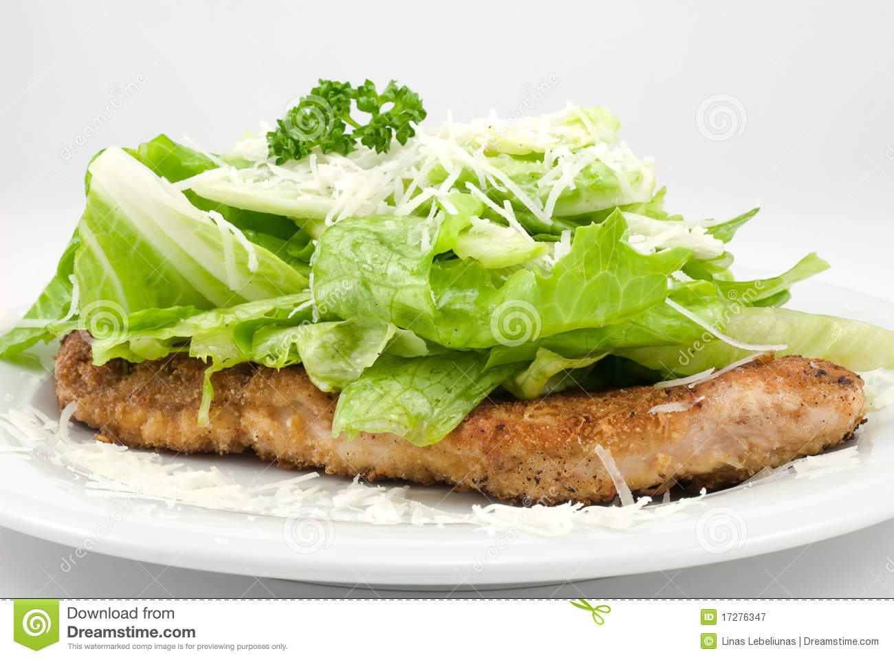 Parmesan Chicken Royalty Free Stock Photography   Image  17276347