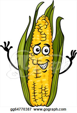 Pictures Cartoon Corn Clipart Picture Royalty Free Corn Stalk Clip Art