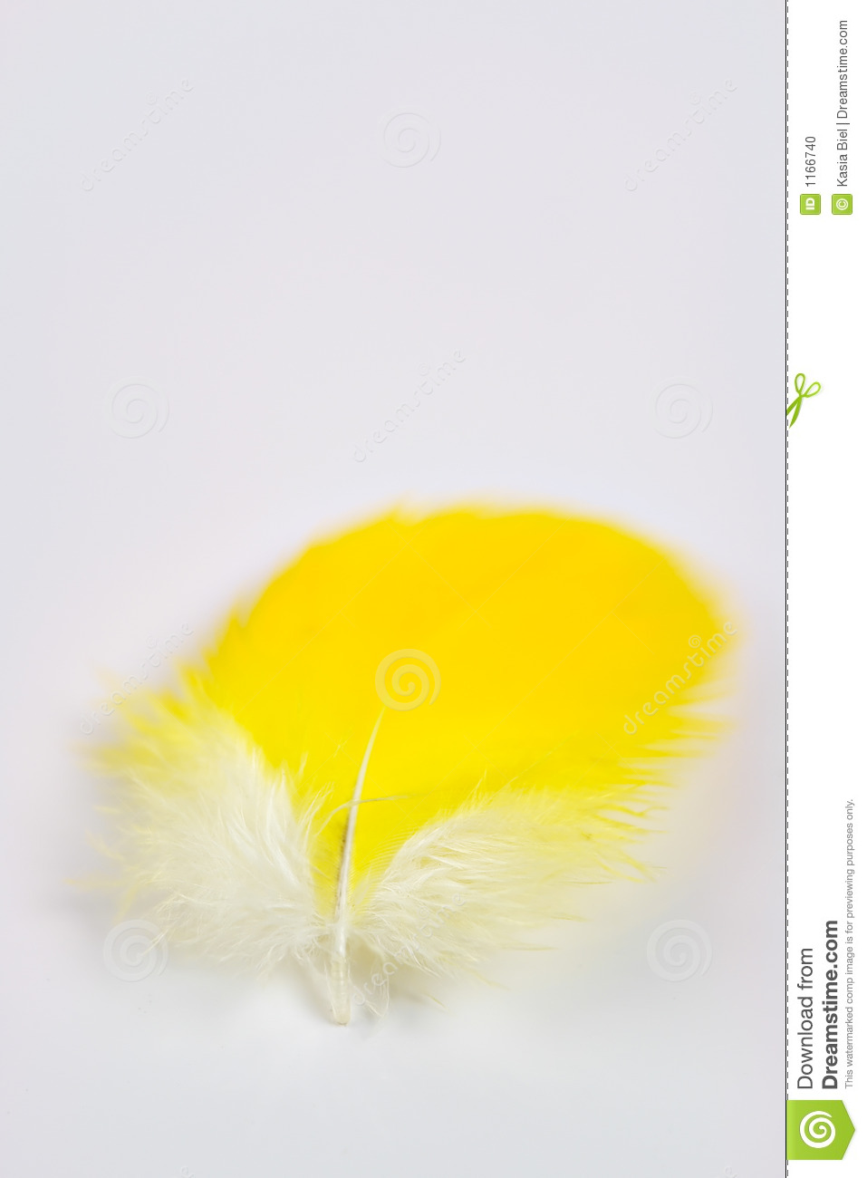 Yellow Feather Stock Photo   Image  1166740