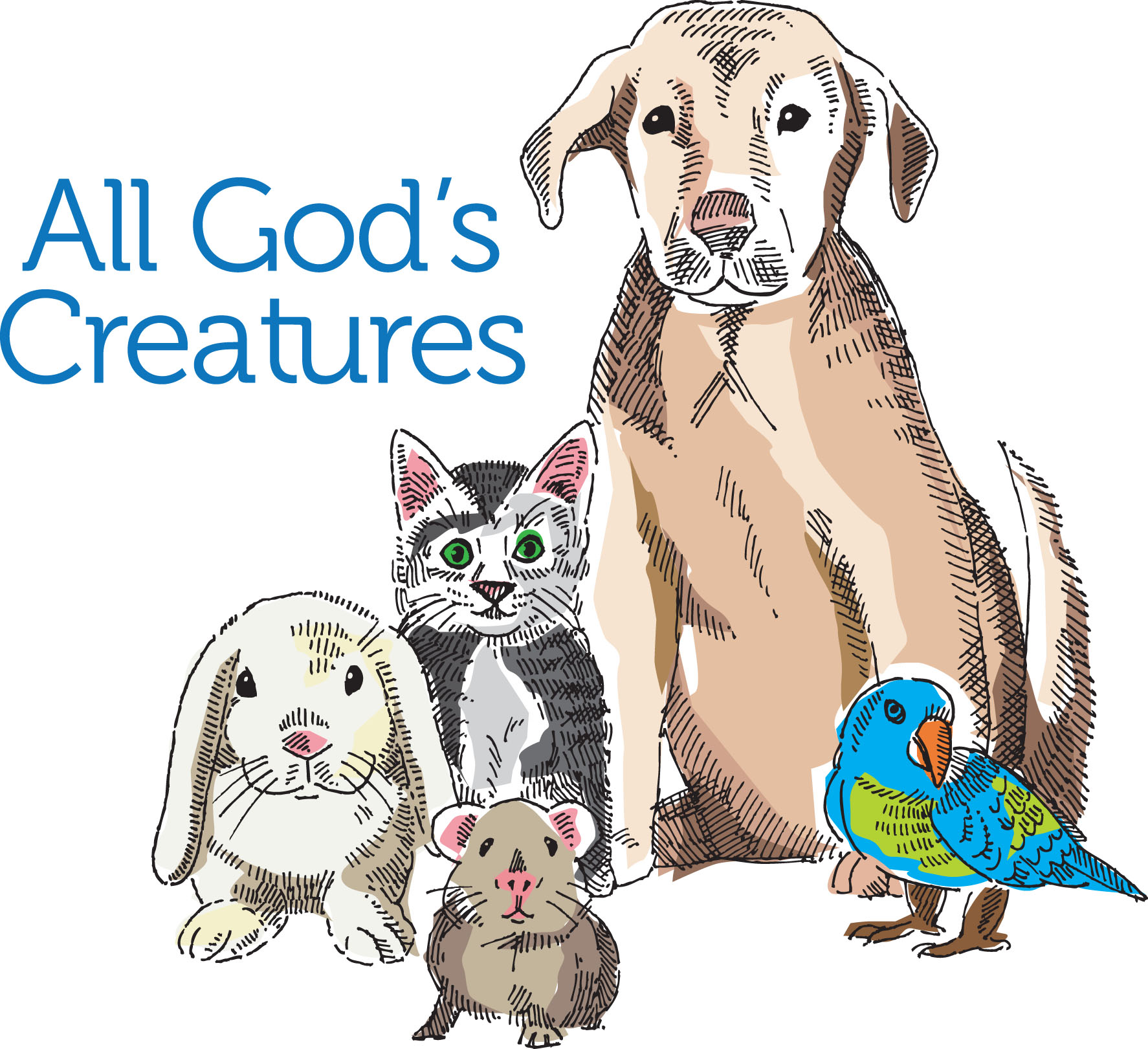 Blessing Of The Animals June 2   Providence United Methodist Church