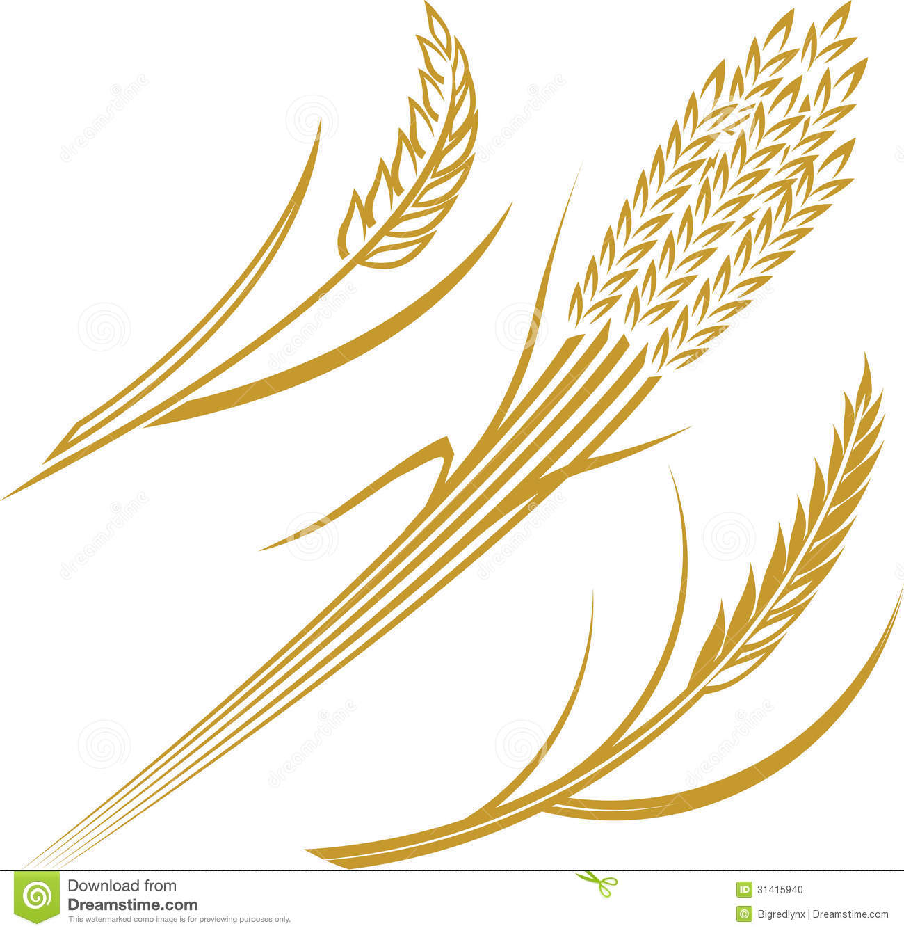 Clipart Illustration Wheat Grain