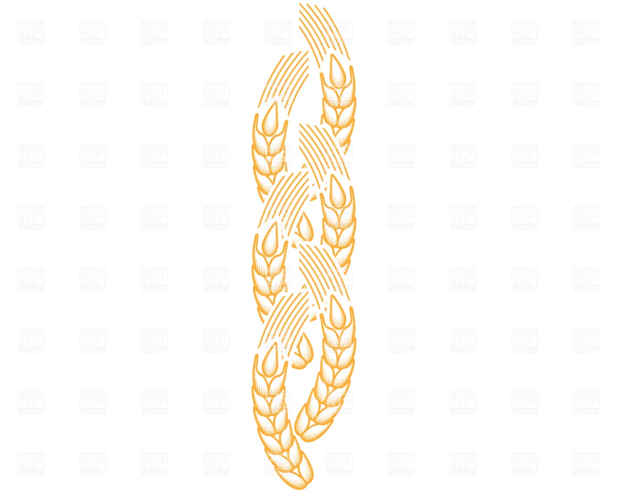 Ear Of Wheat Download Royalty Free Vector Clipart  Eps