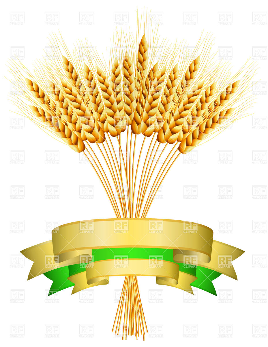 Ears Of Wheat And Ribbons Download Royalty Free Vector Clipart  Eps