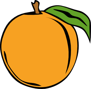 Peach Clip Art At Clker Com   Vector Clip Art Online Royalty Free