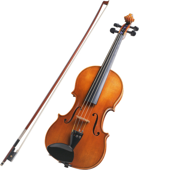 The Violin Is Known Worldwide With Its Varied Use While The Violin Is
