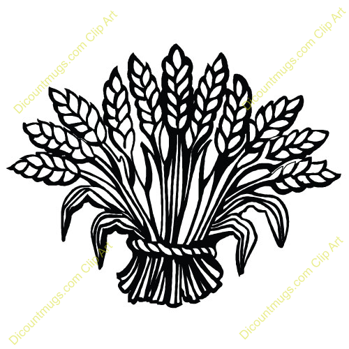 Wheat Bundle Clipart Images   Pictures   Becuo