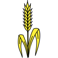 Wheat Clipart Th Stalk Leaves Wheat Png