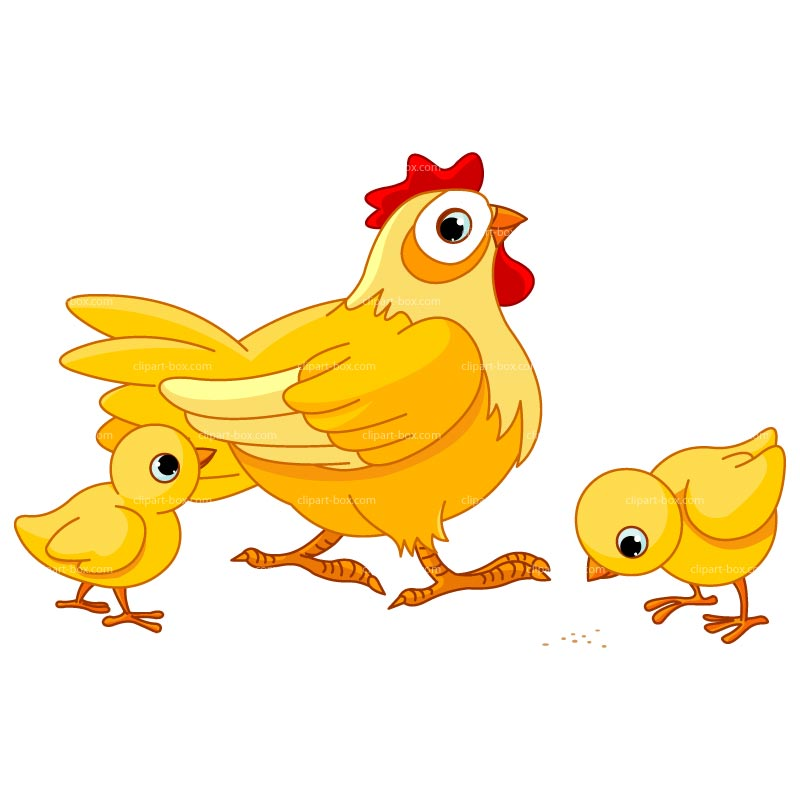 free clipart of cartoon chickens - photo #17