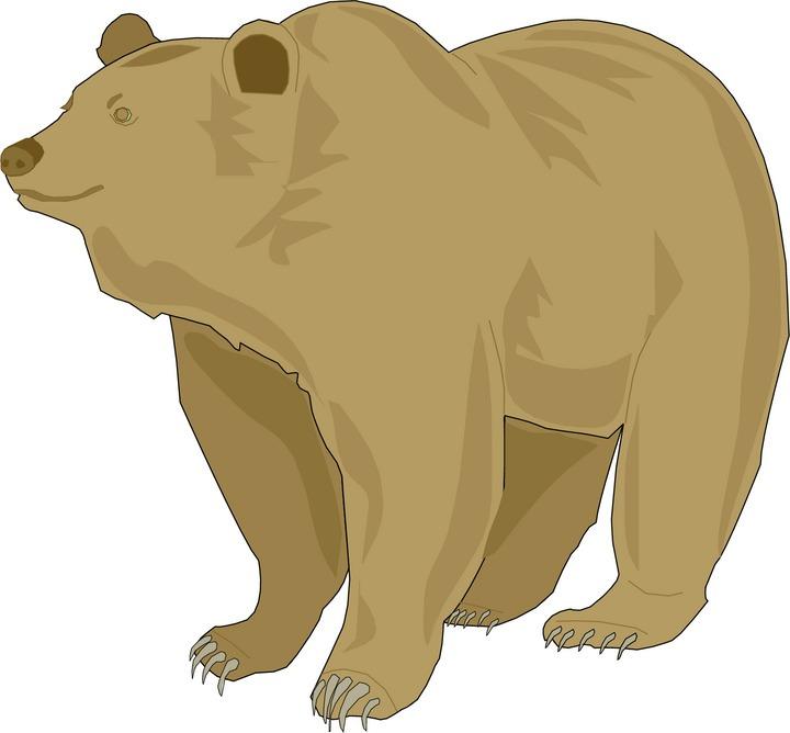 Clip Art Grizzly Bear Clipart grizzly bear clipart kid bear