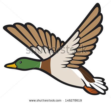 Mallard Duck Cartoon Clipart - Clipart Suggest