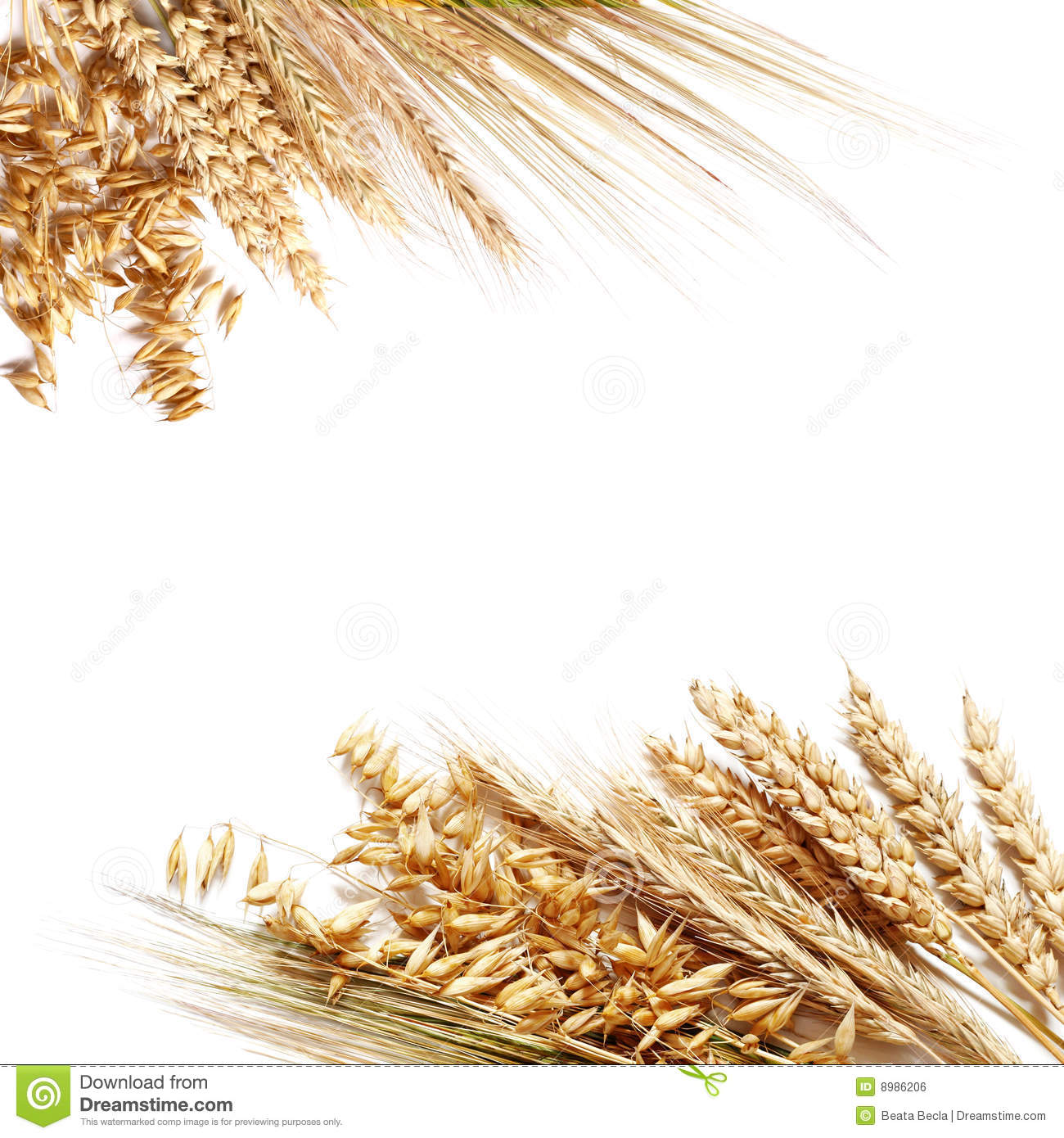 Wheat Border Clip Art Wheat Border Clipart   Free Clip Art Images
