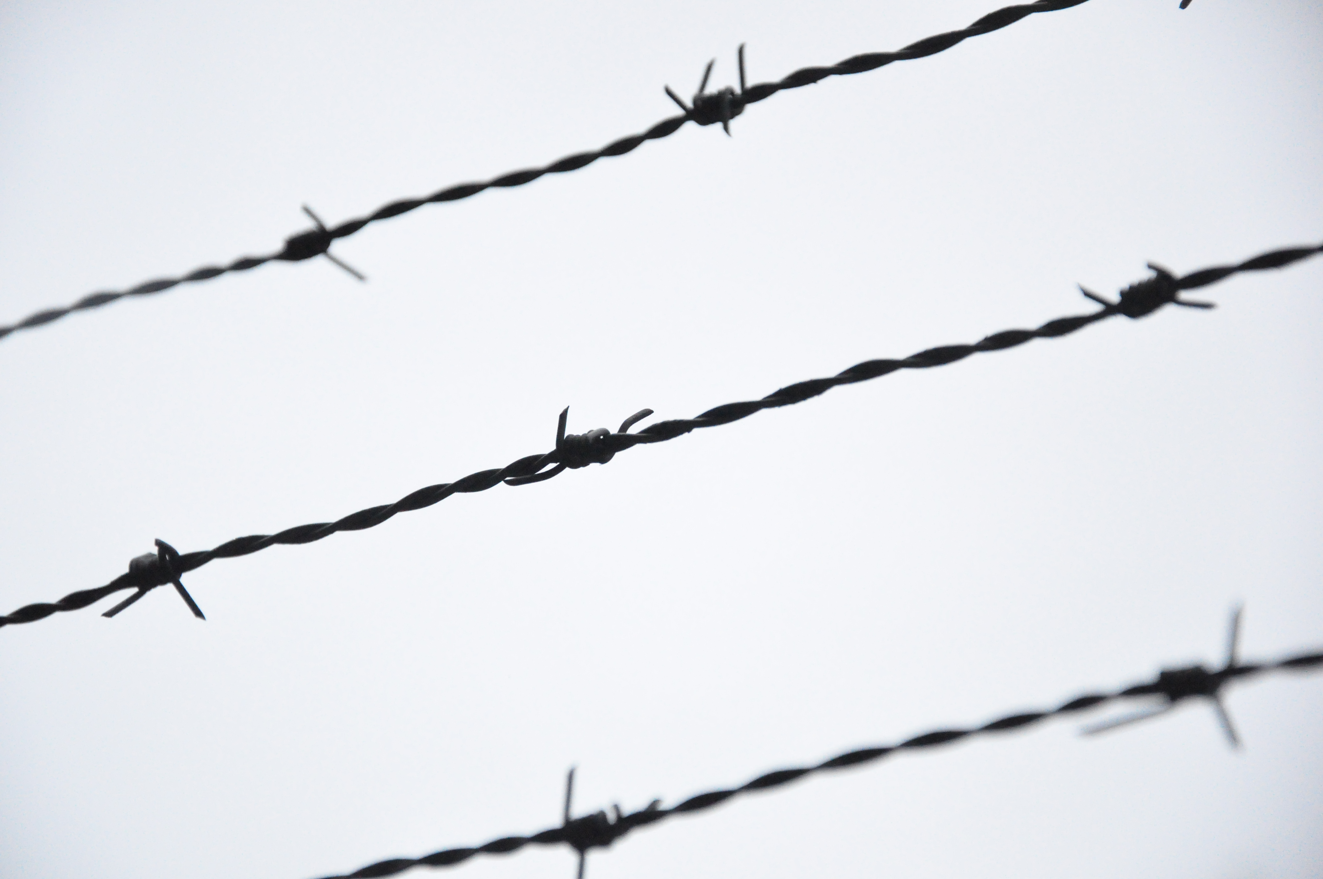 Barbed Wire Fence Drawing Clipart