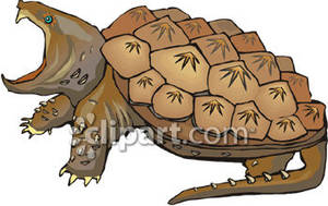Angry Snapping Turtle Royalty Free Clipart Picture