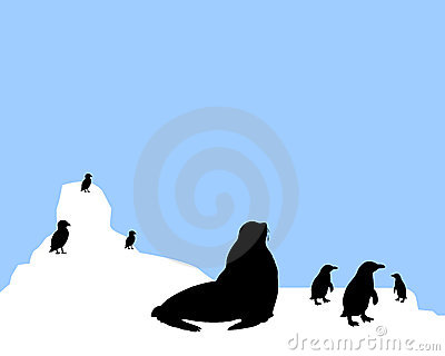 Antarctic Animals Clipart Antarctica Animals Scenario 9345207 Jpg