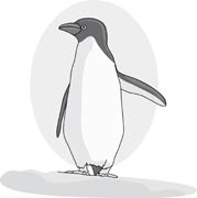 Antarctica Pictures   Graphics   Illustrations   Clipart   Photos