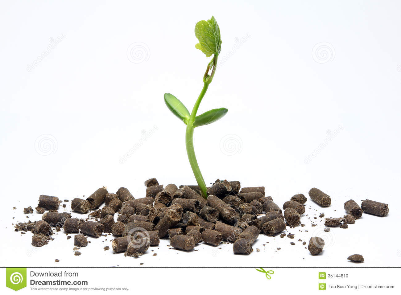application of organic manure in agriculture Organic manure - detailed information on green manure, animal manure, types of organic manure, organic manure benefits ever since agriculture has evolved.