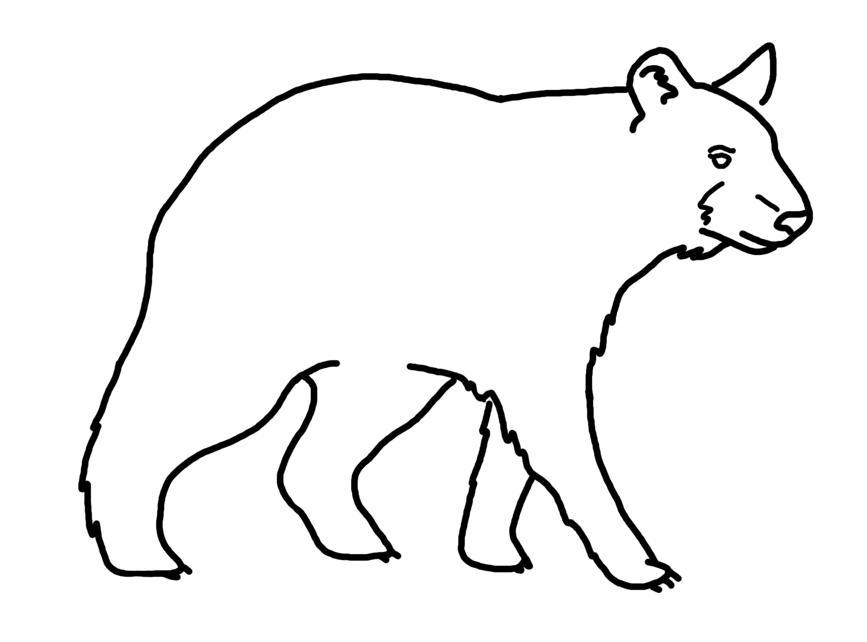 Line Art Bear : American black bear clipart suggest